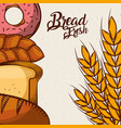 bread fresh donut croissant wheat assortment bake vector image vector image