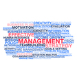 Effective management vector image vector image