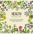 health natural care collection of medicinal herbs vector image vector image