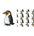 seamless background design with dizzy penguin vector image vector image