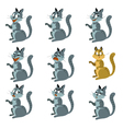 9 cats vector image