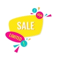 Advertising banner Limited sale vector image vector image