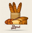 bread baguette in paper bag toasts croissant vector image vector image