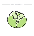 doodle cabbage vector image vector image
