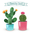 flowering cacti realistic set vector image vector image