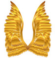 gold angel wings vector image
