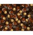 Hand Drawn Walnuts Texture Hazelnuts vector image vector image