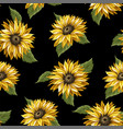 seamless pattern with sunflowers on a black vector image vector image