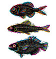 set of drawn fishes different underwater vector image
