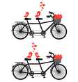 Tandem bicycle with birds in love vector | Price: 1 Credit (USD $1)