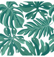 tropical palm leaves seamless pattern beautiful vector image vector image