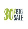 30 percent off sale big vector image