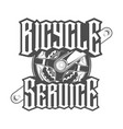 bicycle service shatun vector image