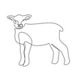 continuous one line drawing a little lamb sheep vector image vector image