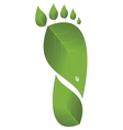 Footprint was made from leaves vector image vector image
