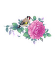 hand drawn goldfinch sitting on rose branch vector image vector image