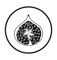 icon of fig fruit vector image vector image