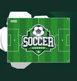 modern professional grass football soccer vector image
