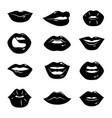 monochrome of beautiful and glossy vector image vector image