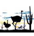 Ostriches in steppe vector image