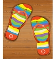 Wood texture with slippers vector image vector image