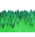 background with green spruce forest silhouette vector image