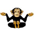 cartoon chimp in meditation vector image vector image