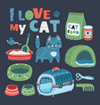 cat food thing and toys vector image