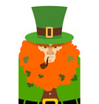Leprechaun in Green Hat Portrait serious vector image vector image