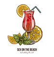 sex on the beach cocktail with mint and orange vector image vector image