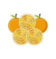 silhouette colorful set with oranges vector image vector image