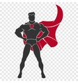 Superhero standing in defensive stance vector image
