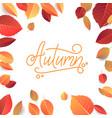 Autumn lettering hand written typography on white