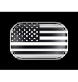 Black and White American Flag Icon vector image vector image