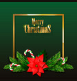 christmas card or invitation with fir branches vector image vector image