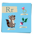 colorful alphabet for kids - letter r vector image vector image