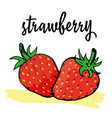 ripe strawberry vector image