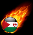 Round icon of sahrawi arab democratic republic vector image