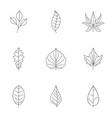 summer leaf icons set outline style vector image