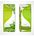 Vegetables vertical banners vector image