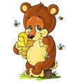 Cute bear cub with honey vector image