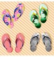 Colorful Flip Flop Set vector image