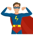 Boy in superhero costume vector image vector image