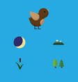 flat icon ecology set of bird cattail forest and vector image