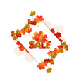 sales banner with autumn leaves isolated on white vector image