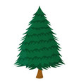 tree xmas isolated icon cartoon style for vector image vector image