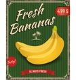 Fresh bananas Banana in retro style vector image
