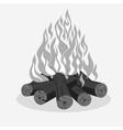 Bonfire camping burning woodpile vector image vector image