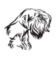 decorative portrait dog sealyham terrier vector image vector image