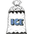 package design with ice eps 10 vector image